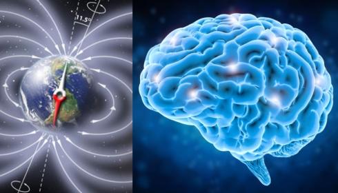 Порядка 10% людей физически ощущают приближение переворота Земли.