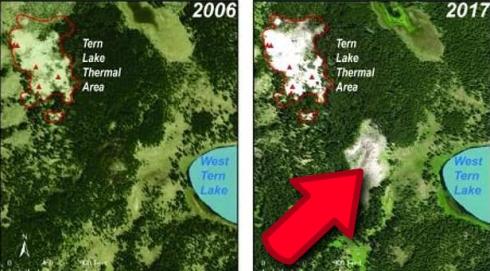 USGS сообщает официально: в Йеллоустоуне появилось новое термальное поле.
