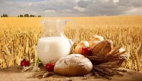 Текущее состояние мирового аграрного производства