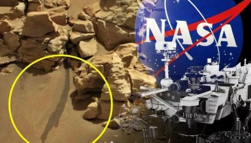 Марсоход Curiosity нашел в Неваде лужу воды.