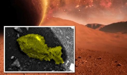 Марсоход Curiosity нашел в пустынях Невады дохлую рыбу.