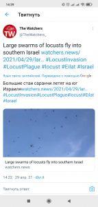 Screenshot_2021-04-29-14-39-14-860_com.twitter.android.jpg